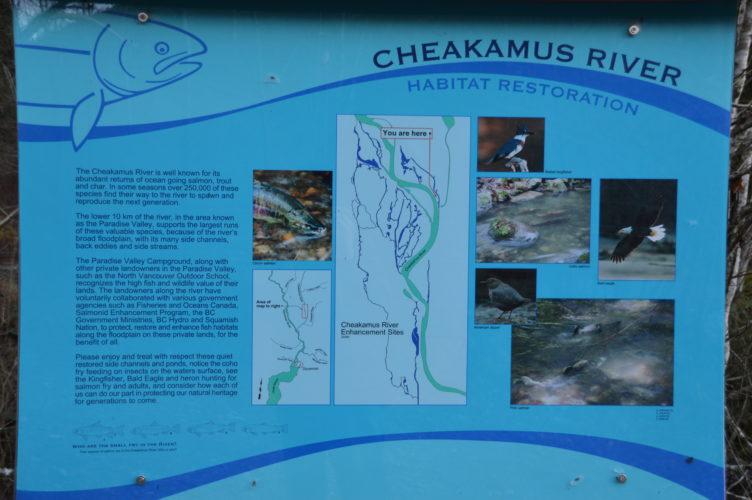 Squamish-Hatchery (3)