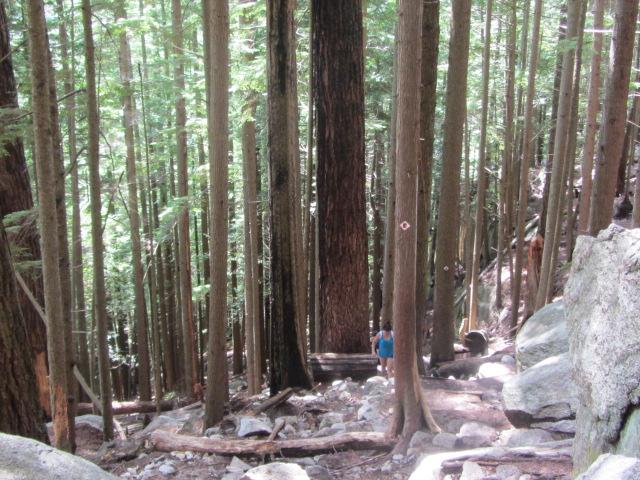 squamish-hiking (5)