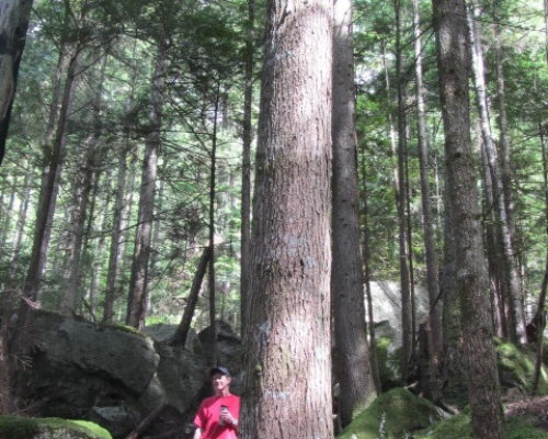 squamish-hiking (3)