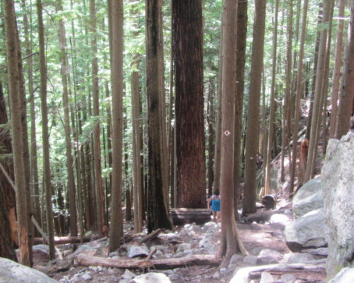squamish-hiking (5)