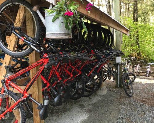 squamish-mountain-biking (1)